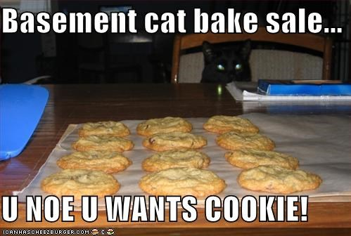 Basement cat bake sale...  U NOE U WANTS COOKIE!