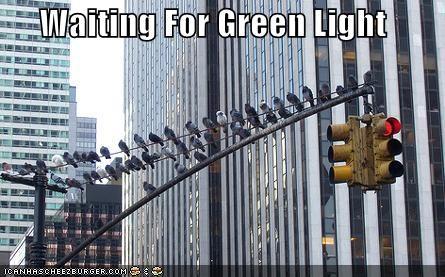 Waiting For Green Light