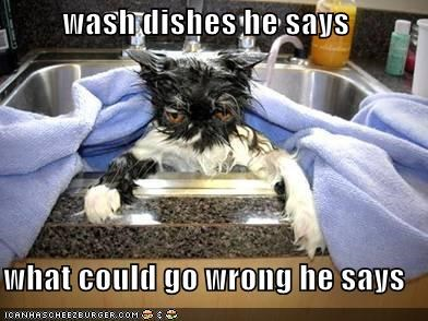 wash dishes he says  what could go wrong he says