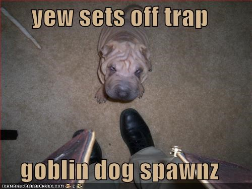 yew sets off trap  goblin dog spawnz