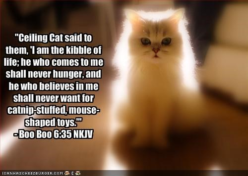 """Ceiling Cat said to them, 'I am the kibble of life; he who comes to me shall never hunger, and he who believes in me shall never want for catnip-stuffed, mouse-shaped toys.'""  