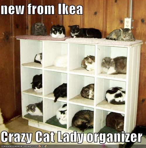 new from Ikea  Crazy Cat Lady organizer