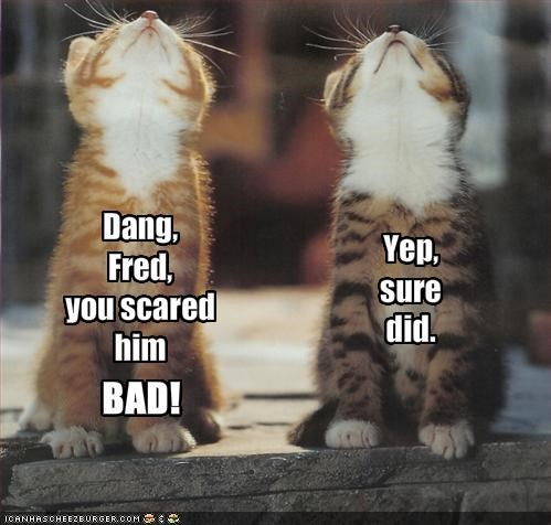 Dang, 
