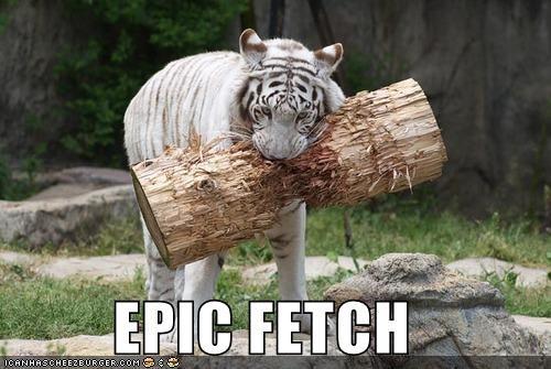 EPIC FETCH