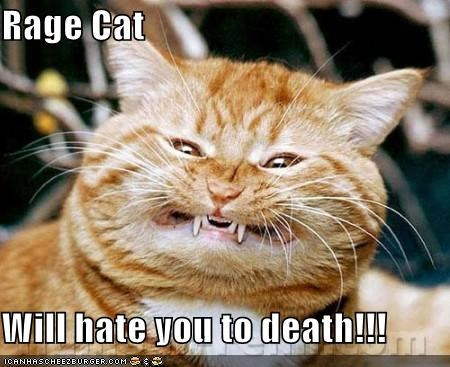 Rage Cat  Will hate you to death!!!