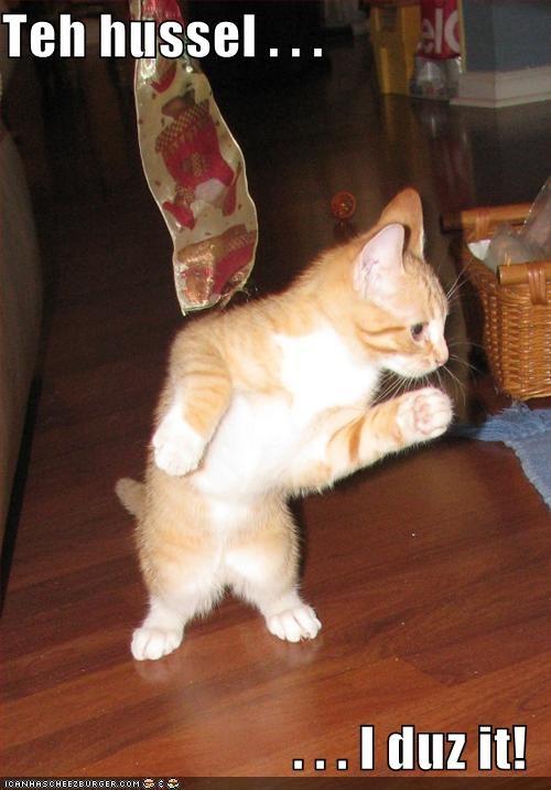 dancing,w00t