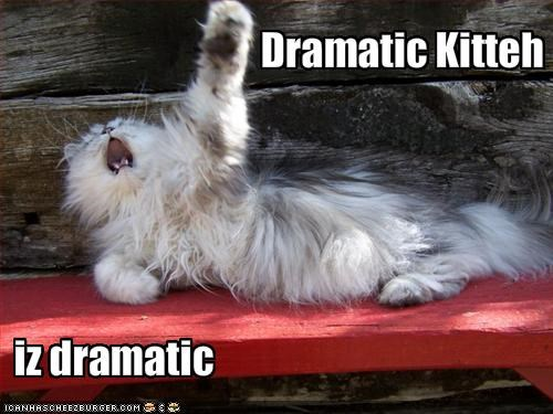 Dramatic Kitteh