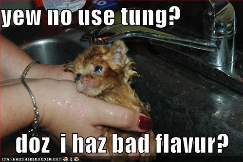 yew no use tung?     doz  i haz bad flavur?