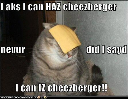 I aks I can HAZ cheezberger nevur                               did I sayd I can IZ cheezberger!!