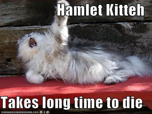 Hamlet Kitteh  Takes long time to die
