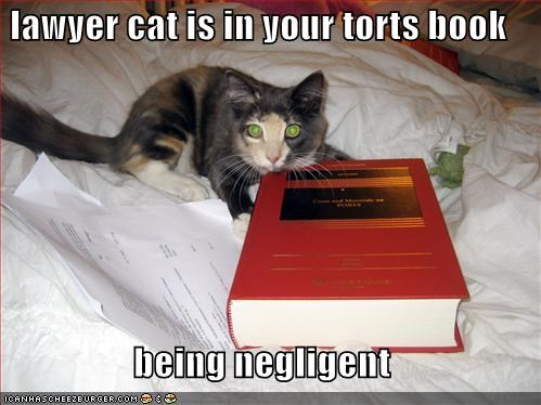 lawyer cat is in your torts book  being negligent