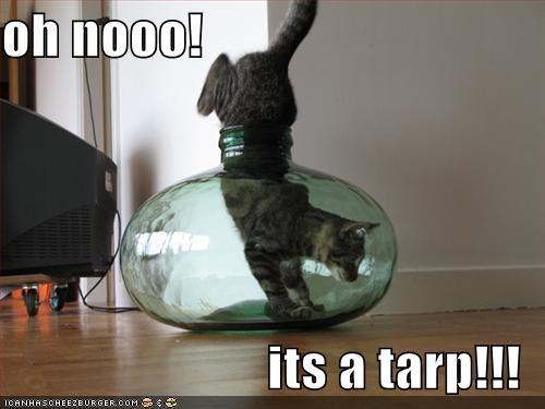 It's a tarp