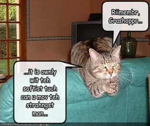 Riimembr, Grashoppr...