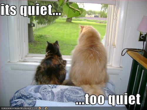 its quiet... ...too quiet - Cheezburger - Funny Memes ...