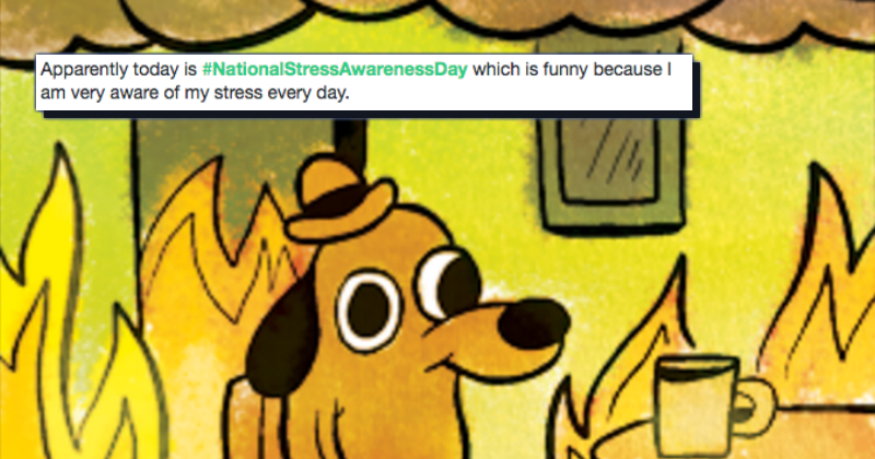 Funny Memes For Stress : It s national stress awareness day so enjoy these stressful memes
