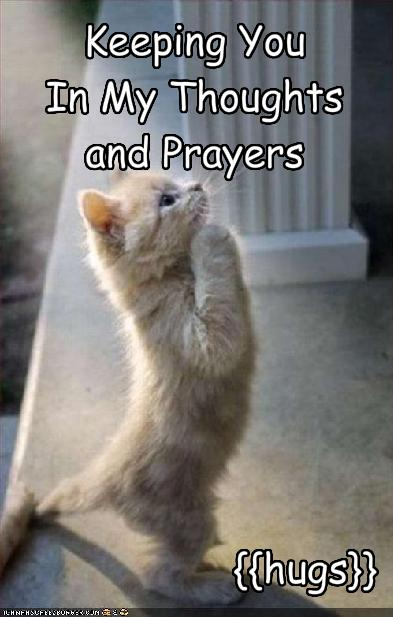 Keeping You In My Thoughts And Prayers Cheezburger