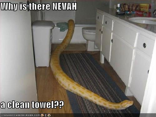 Why Is There Nevah A Clean Towel Cheezburger Funny Memes