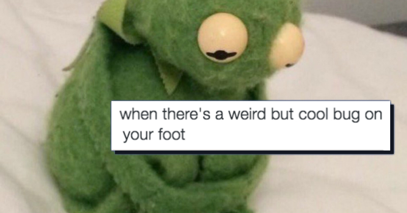 Twitter Tries To Cheer Everyone Up By Turning This Sad Kermit Meme Into A Heartwarming Wholesome One Memebase Funny Memes