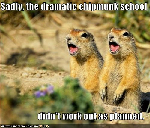 Sadly, the dramatic chipmunk school didn't work out as