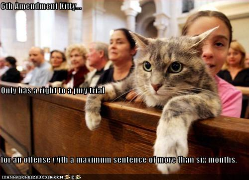 6th Amendment Kitty... Only has a right to a jury trial ...