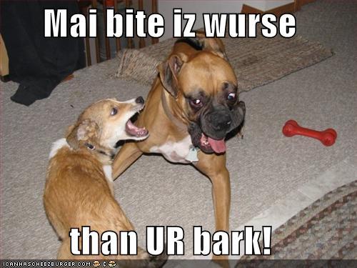 Wurse dog