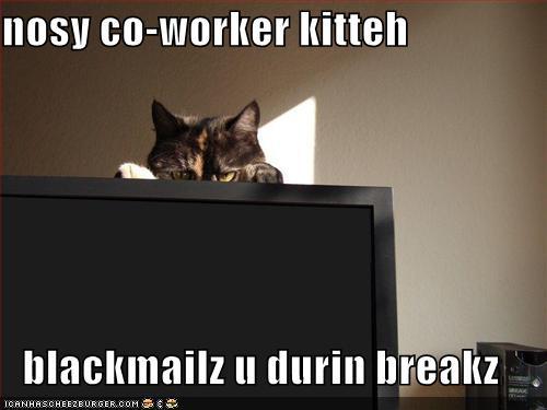 Nosy Co Worker Kitteh Blackmailz U Durin Breakz