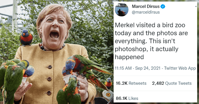 Twitter Thread: Angela Merkel Visits A Zoo And Ridiculousness Ensues