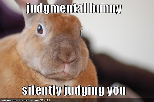 Judgmental Bunny Silently Judging You Cheezburger