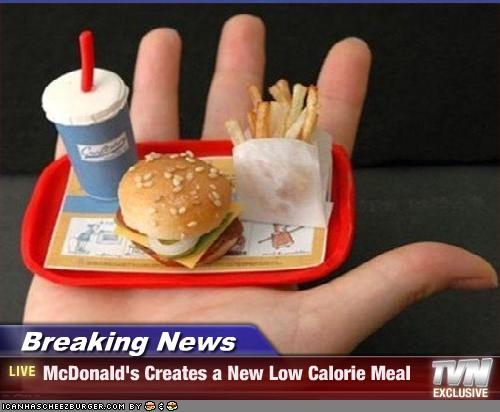 Breaking News Mcdonald S Creates A New Low Calorie Meal Cheezburger Funny Memes Funny Pictures