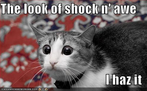 The look of shock n' a...