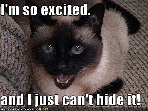 I'm so excited. and I just can't hide it! - Cheezburger ...