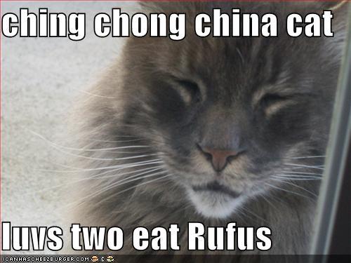 Ching Chong China Cat Luvs Two Eat Rufus Cheezburger