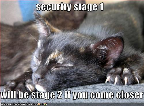 Security Stage 1 Will Be Stage 2 If You Come Closer Cheezburger Funny Memes Funny Pictures