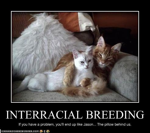 Interracial Dating Sites
