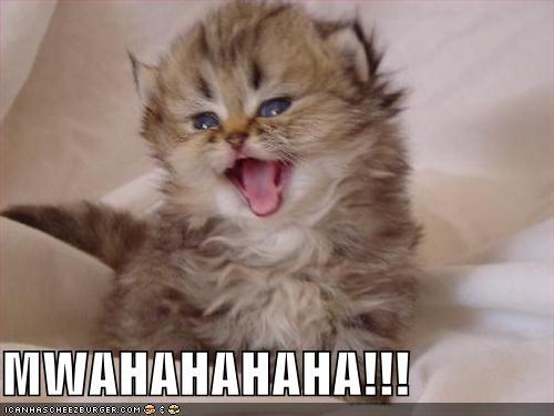 MWAHAHAHAHA!!! - Cheezburger - Funny Memes | Funny Pictures
