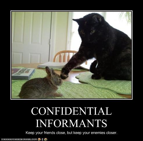 CONFIDENTIAL INFORMANTS - Cheezburger - Funny Memes | Funny Pictures
