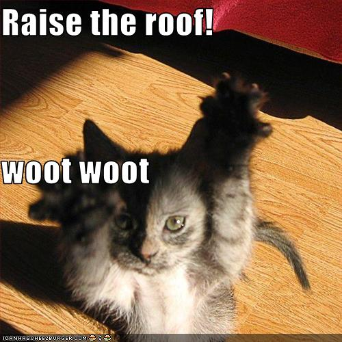 Raise The Roof Woot Woot Cheezburger Funny Memes