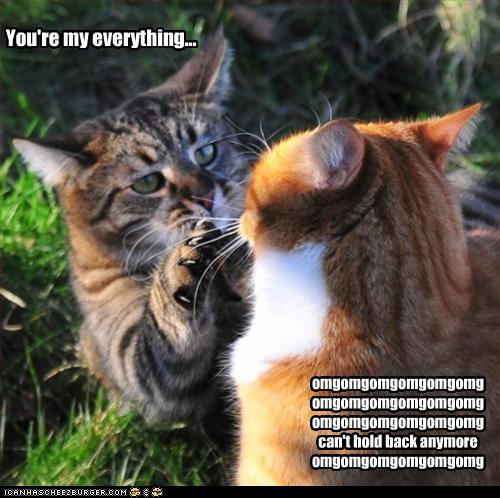 You're my everything... - Cheezburger - Funny Memes | Funny Pictures