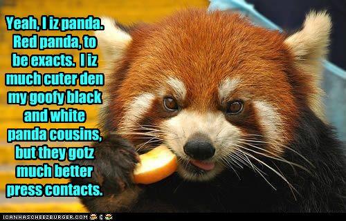 Royal Panda Android App