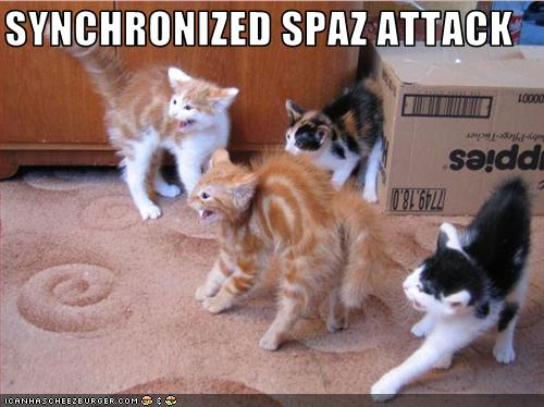 Synchronized Spaz Attack Cheezburger Funny Memes