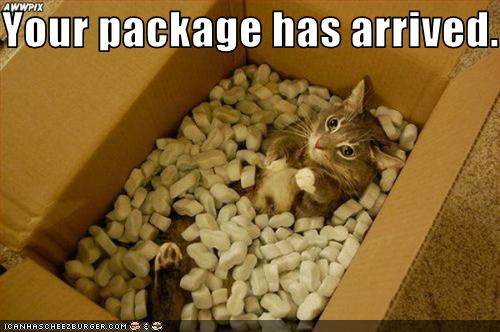 Your package has arrived. - Cheezburger - Funny Memes ...