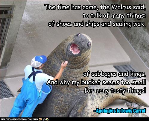 The Time Has Come The Walrus Said To Talk Of Many Things
