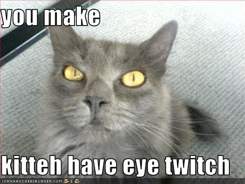 You Make Kitteh Have Eye Twitch Cheezburger Funny