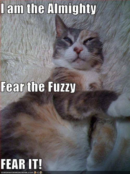 I Am The Almighty Fear The Fuzzy Fear It Cheezburger Funny