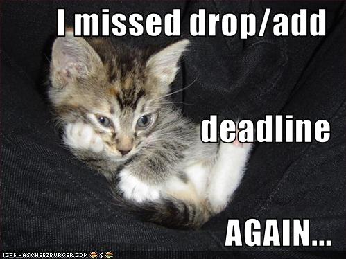 I Missed Drop Add Deadline Again Cheezburger Funny Memes