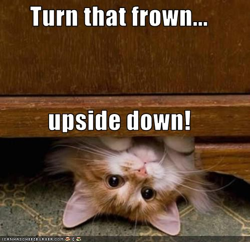 Turn That Frown Upside Down Cheezburger Funny