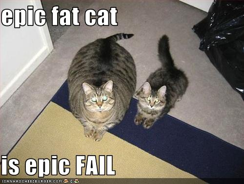Epic Fat Cat Is Epic FAIL