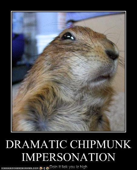 DRAMATIC CHIPMUNK IMPERSONATION - Cheezburger - Funny Memes
