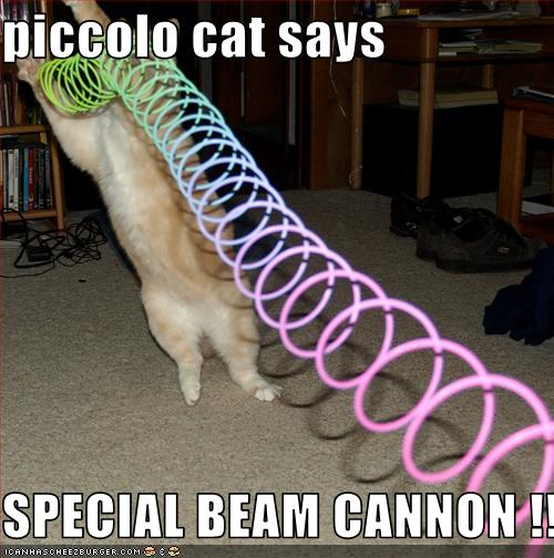 piccolo cat says special beam cannon cheezburger