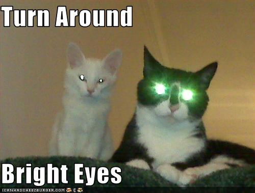 Turn Around Bright Eyes Cheezburger Funny Memes